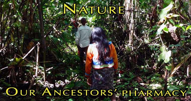 nature_pharmacy_long